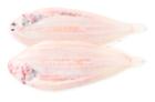 Tong zonder vel, 150-200 gr