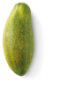 Grote Formosa papaja