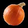 Oranje pompoen